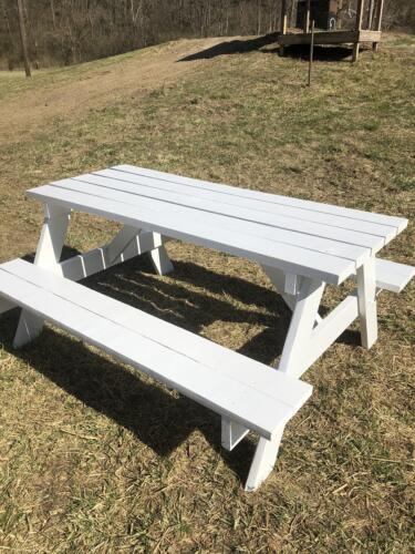 New picnic table painted