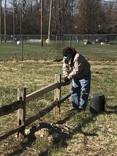 Volunteer preparing fence for paint